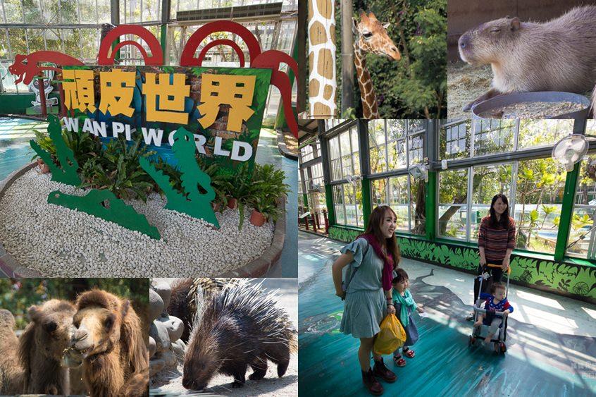 【台南親子旅遊推薦】南部最大的動物園! 好適合帶小朋友來!!好好玩值回票價~頑皮世界